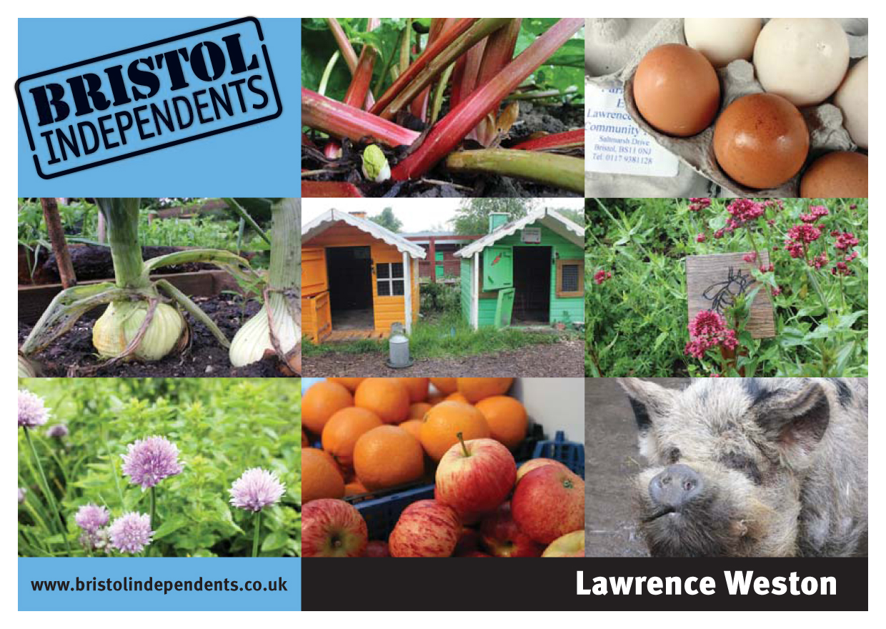 Lawrence Weston postcard - local places, shop signs and food
